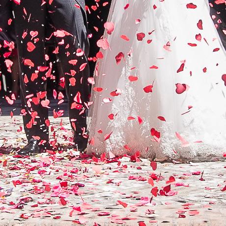 Coordinamos todo durante el día de tu boda