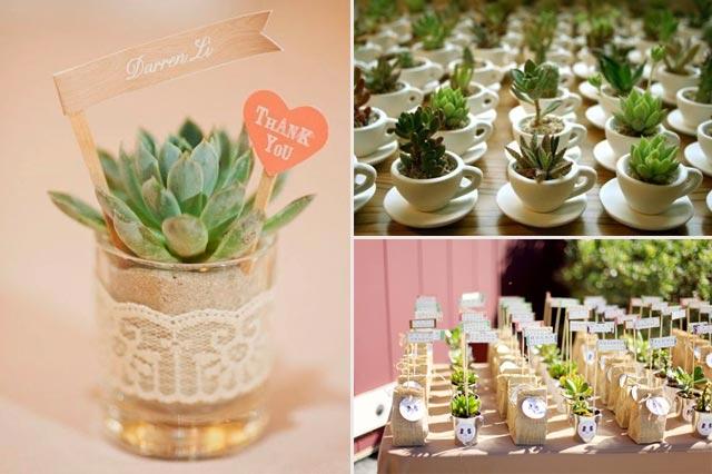 Plantas como regalo para los invitados a una boda