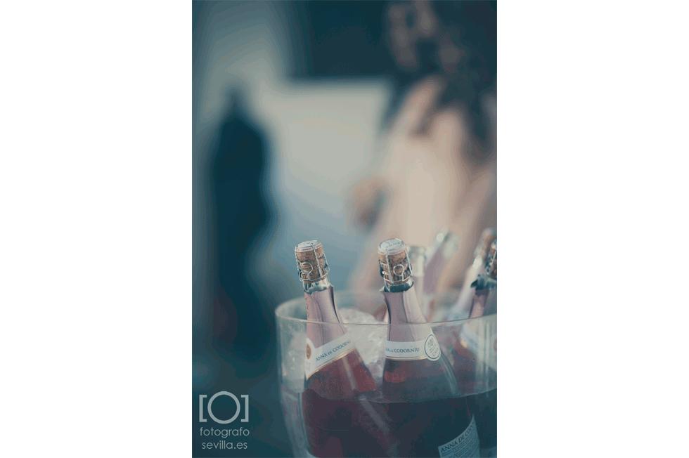 Detalle de las botellas de cava con las que brindaron justo después de la ceremonia civil