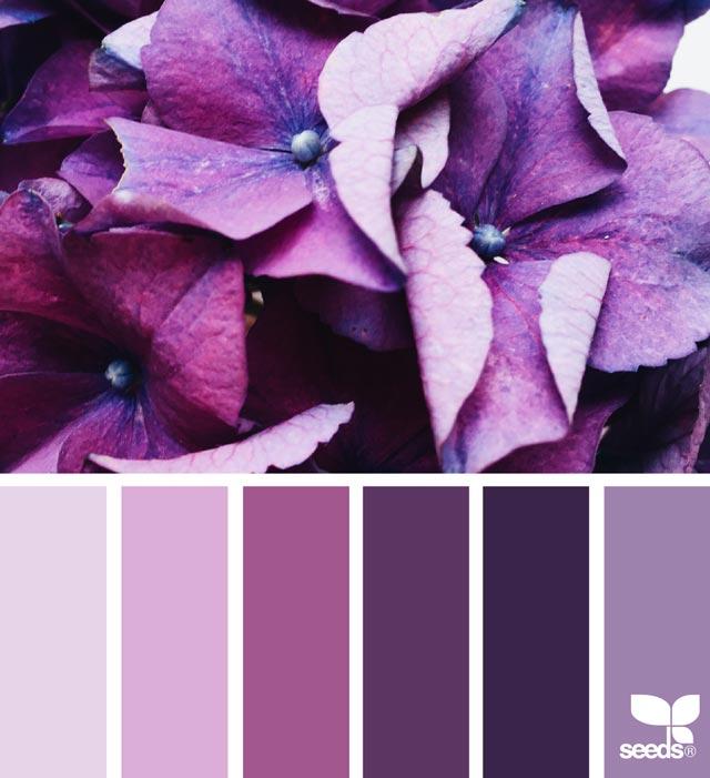 Carta de colores Pantone Ultravioleta
